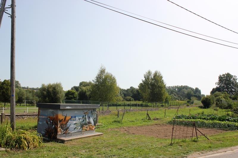 Décoration Transfo ERDF dans la Commune de Braches (Somme) representant un decor de marais